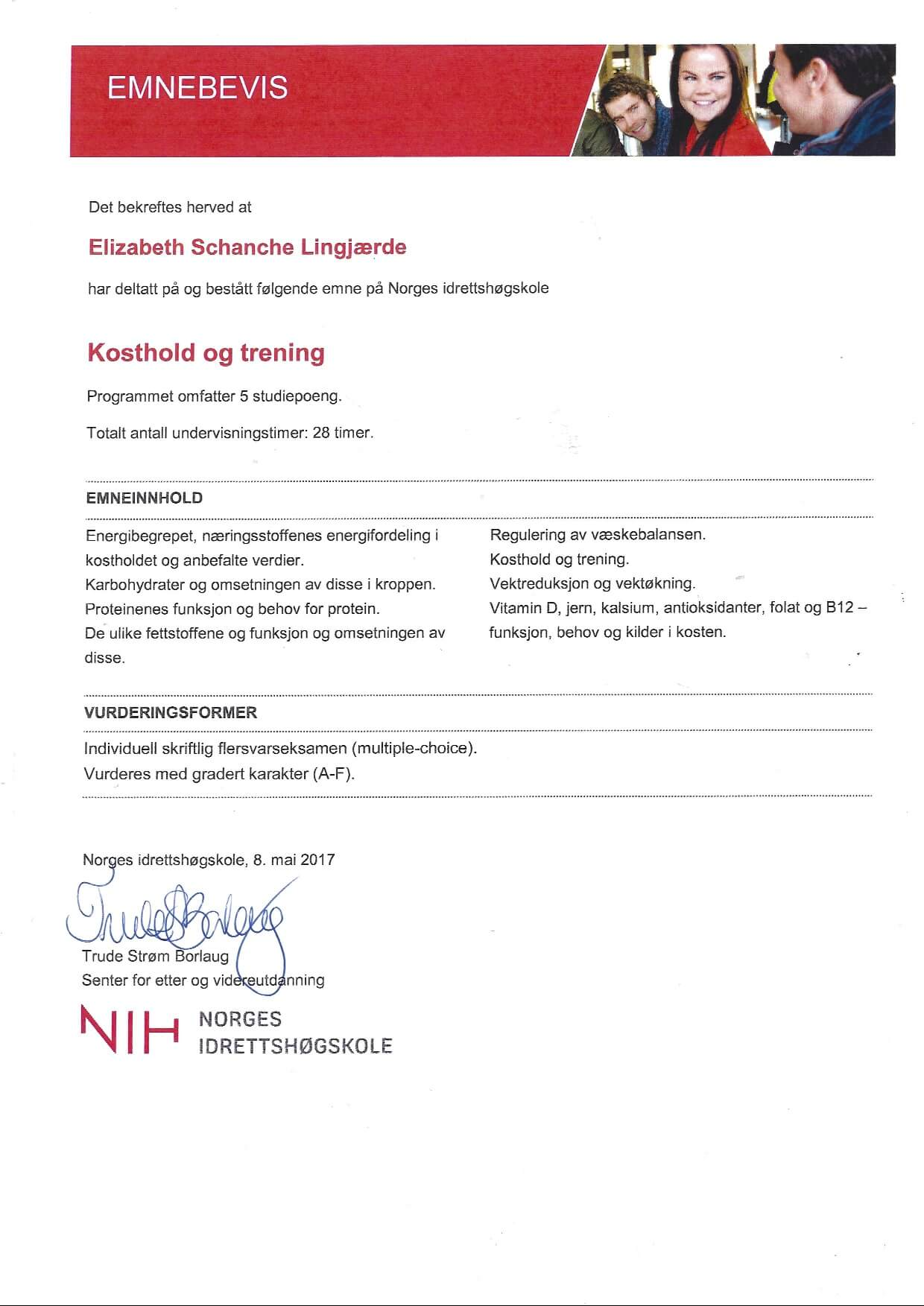 Norges Idrettshøgskole